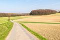 Detmold - 2015-04-19 - Hornoldendorf (18).jpg