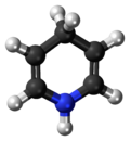 Ball-and-stick model of the dihydropyridine molecule