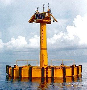 National Data Buoy Center - A typical deep-sea NDBC discus buoy in the Gulf of Mexico