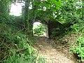 Dismantled railway - geograph.org.uk - 892382.jpg