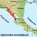 Distribution of the Southern Cantil (Agkistrodon howardgloydi).jpg