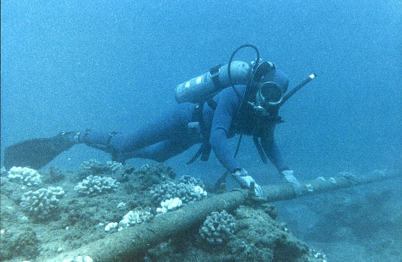 File:Diver Checking Underwater Protection of Cable - Flickr - The Official CTBTO Photostream.jpg