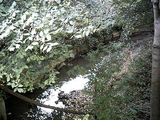 Dollis Brook - Dollis Brook, looking south from Totteridge Lane, taken about 9am, Thursday 13th, October, 2005.