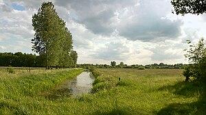 Drömling - The landscape of the Drömling