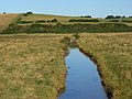 Drainage ditch, the Cuckmere valley - geograph.org.uk - 946634.jpg