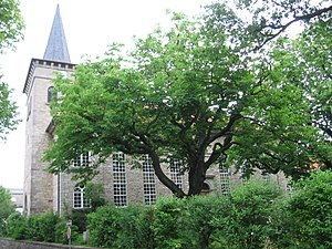 Dransfeld - Image: Dransfeld Kirche
