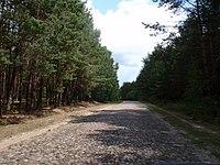 Droga Milejczyce-Repczyce-1.jpg