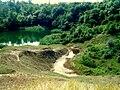 Durgău lakes at Turga (Romania) - lake 1 silt up and lake 2 .jpg