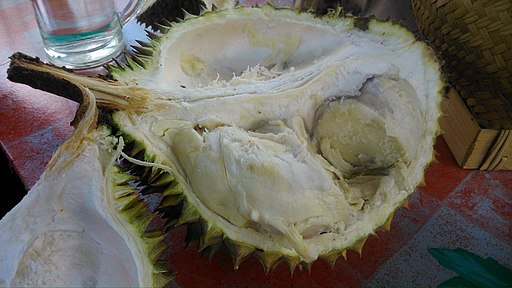 Durian fruit opened PJ DSC 0802