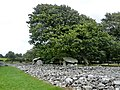 Dyffryn Burial Chamber - panoramio.jpg