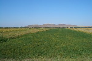 Economy of Kyrgyzstan - Irrigated fields in the Chuy Valley