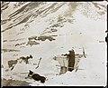 Edvard Bay på vakt, 1900 (16234359901).jpg