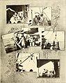 El Laboratorio biológico-marino de Porto Pí (Precedentes - fundación - primeros trabajos) (1916) (21243523986).jpg