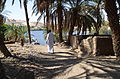 Elephantine Island by Hatem Moushir 130.JPG