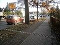 Entenschnabel - Doppelpflasterstreifen zum Mauerverlauf von Glienicke.jpg