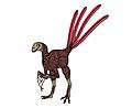 Epidexipteryx (long fingers).JPG