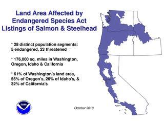 Steelhead and salmon distinct population segments