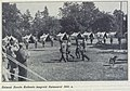 Esimesi noorkotkaste laagreid Naissaarel 1932. aastal.jpg
