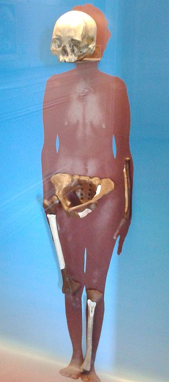 Luzia Woman - Remains as displayed at the National Museum of Brazil in Rio de Janeiro
