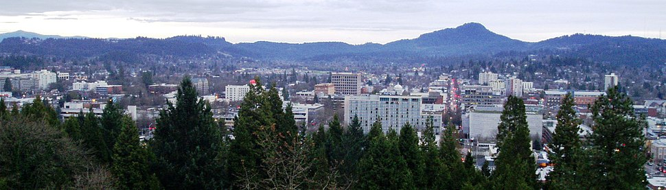 Eugene skyline crop