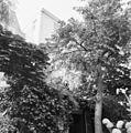 Exterieur GEDEELTE VAN DE ACHTERGEVEL - Amsterdam - 20299028 - RCE.jpg