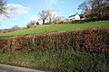 Exton, towards Higher Hone - geograph.org.uk - 316349.jpg
