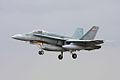 F18 - RIAT 2008 (2746879744).jpg