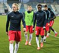 FC Liefering gegen SC Wiener Neustadt (März 2016) 13.JPG