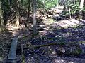 FLT M19 Spanish Loop Trail 1.4 mi - Four puncheons 2x10x8', RR tie sills - panoramio.jpg
