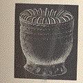 FMIB 53044 Thecocyathus cylindraceus, Pourt.jpeg