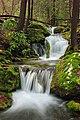 Fall Creek (Revisited) (4) (11660060164).jpg