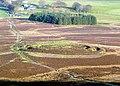 Fallburn Hillfort - geograph.org.uk - 1058953.jpg