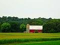 Farm near Pine Bluff - panoramio.jpg
