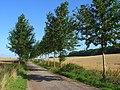 Farmland and bridleway, Boxford - geograph.org.uk - 928069.jpg