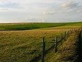 Farmland near Devil's Dyke - geograph.org.uk - 59258.jpg