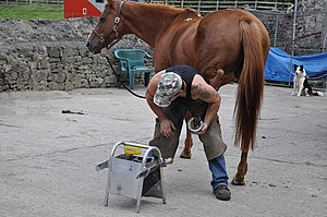 English: Farrier at work - Ogmore