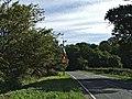 Ferny Hill near obelisk in Trent Park - geograph.org.uk - 54457.jpg