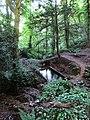 Ffynnon St Dyfnog - St Dyfnog's Well, Llanrhaeadr, Denbighshire, Wales 09.jpg