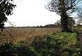 Field adjoining farm track - geograph.org.uk - 1061425.jpg