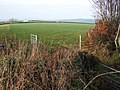 Field at Southdown - geograph.org.uk - 655078.jpg