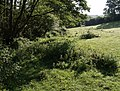 Field below Edge Hill - geograph.org.uk - 450030.jpg