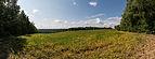 Fields near Frankenwarte, Würzburg 20140804 1.jpg