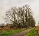Fietspad naast Scharsterrijn Locatie, Langweerderwielen (Langwarder Wielen) en omgeving. 02.jpg