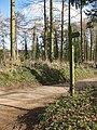Fingerpost on the Wye Valley Walk - geograph.org.uk - 1187287.jpg