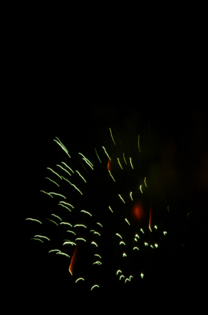 Barium chlorate - The green seen in this firework is produced by barium chlorate and barium nitrate