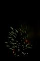 FireworkatDisneyWorld.png