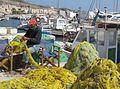 Fisherman - Perivolos Harbor - Santorini.jpg