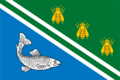 Flag of Rybnoe (Ryazan oblast).png