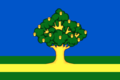 Flag of Rzhavki (Moscow oblast).png