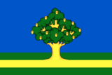 Flag of Rzhavki (Moscow oblast).png